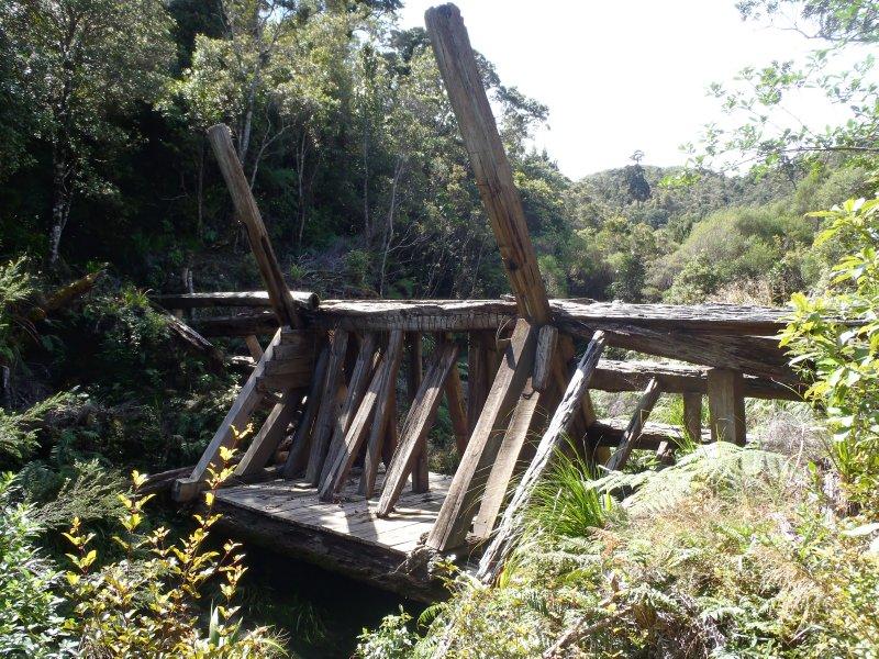 Historic Kauri Dam