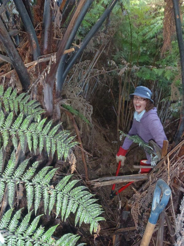 Julie Clearing Room for Native Tree Planting