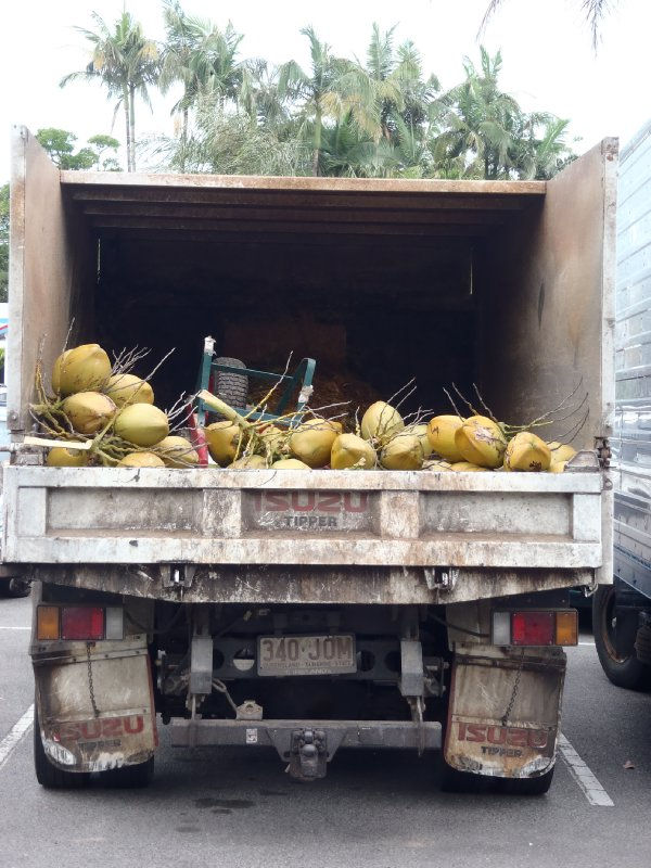 Coconut Truck at Port Douglas Farmers Market