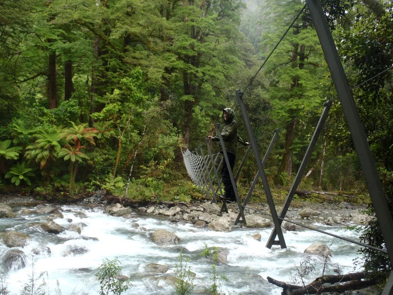 Moraine Creek Crossing