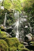 Waterfall in Lamington NP