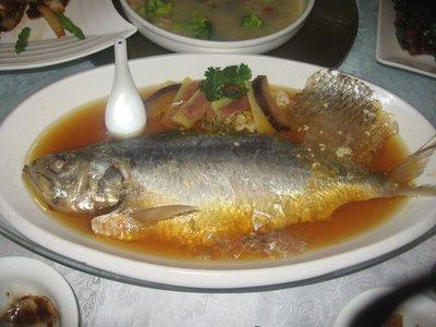 Dinner in Shanghai