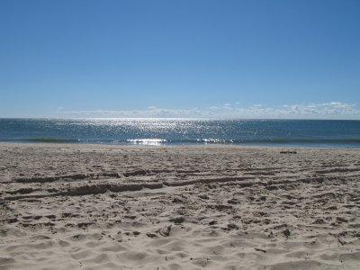 Lovely Amagansett Beach!