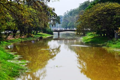 The nice side of the Siem Reap river...