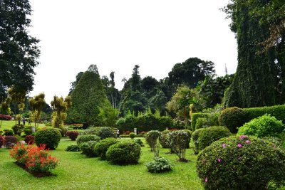 Across the Peredeniya Botanical Gardens