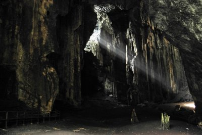Inside the noisy Gomantong Caves