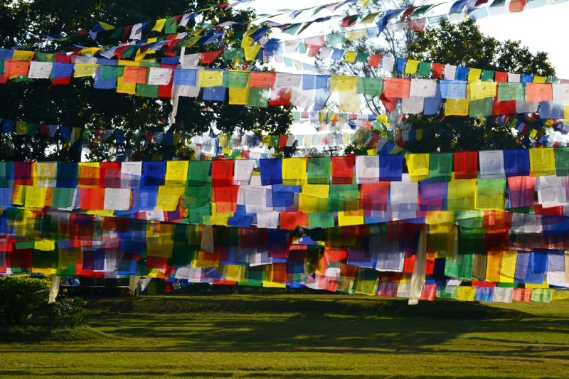 Prayer flags dominate the space in Buddha's Gardens in Lumbini