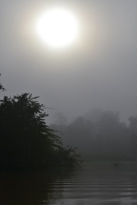 The morning sun tries to break through the mist