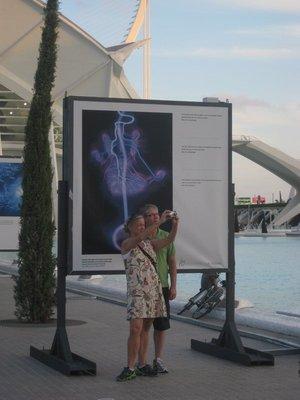 turister på la Ciudad des artes y Ciencias