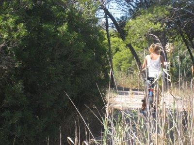 Chicas perdidas en los busques