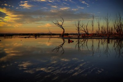 Sunrise Over Winton Wetlands