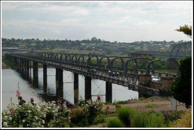 The First Bridge across the Murray