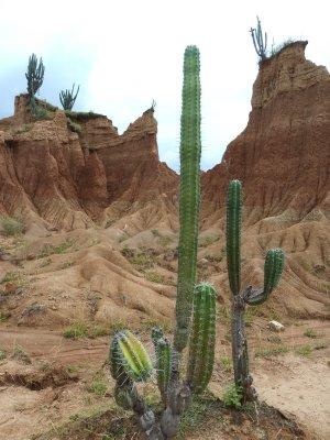 San_Aug-TierraD_163.jpg
