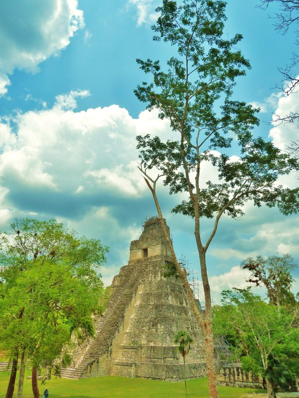large_3__Tikal_070.jpg