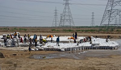 Salt farming in the Kutch