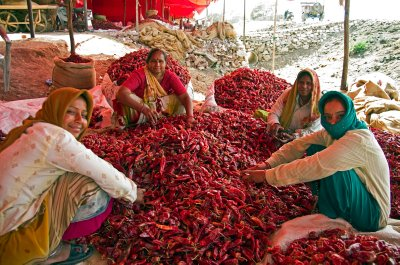 2India2012..26_0008.jpg