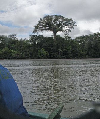 On the Napo River