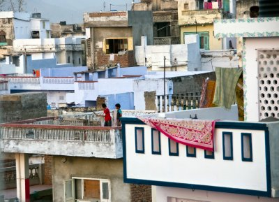 Cricket on the rooftops!