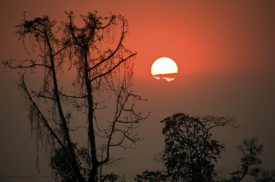 Lovely Assam Sunset