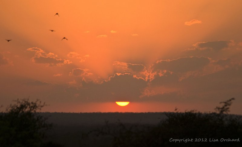 Sunset in Panna