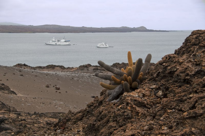 Lava Catcus with La Pinta in background on right