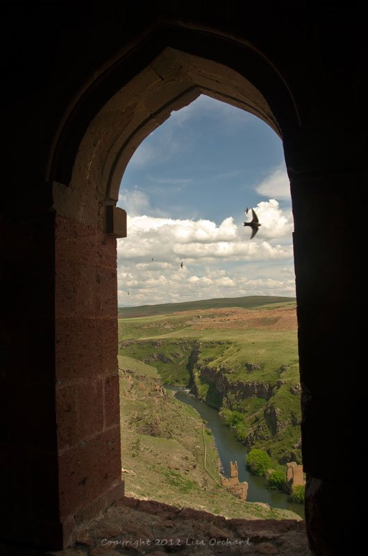 Swifts on wing, from the Menüçer Camii Mosque and overlooking the 10th century bridge over the Arkhurian River to Armenia
