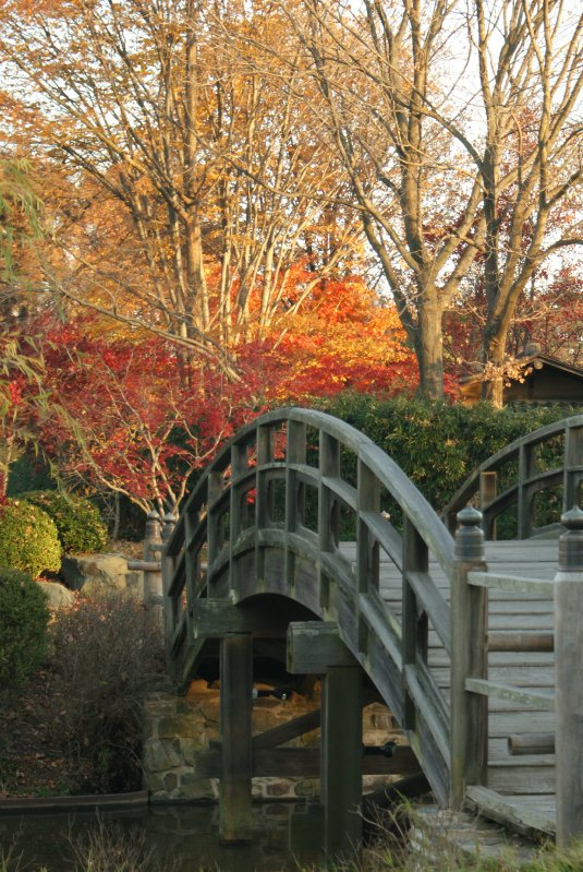Bridge to Tea House