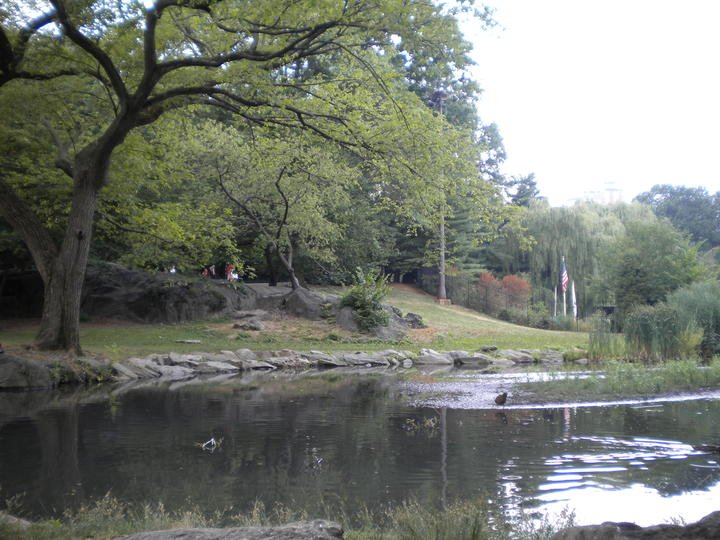Laghetto a Central Park