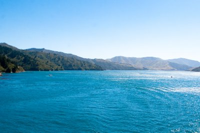 Cook Strait-12