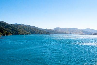 Cook Strait-12