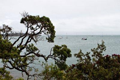 New Zealand-11