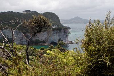 New Zealand-23