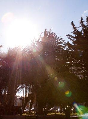 Punta_Arenas-7.jpg