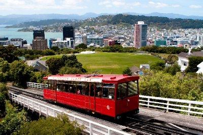 Wellington-12