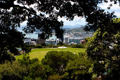 Wellington-9