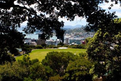 Wellington-9