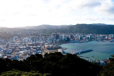 Wellington2_-2