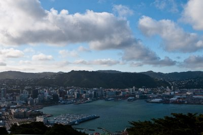 Wellington2_