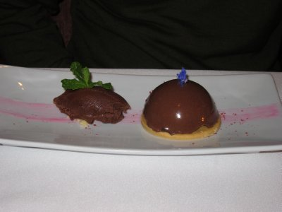 Chocolate Bombe and Sorbet