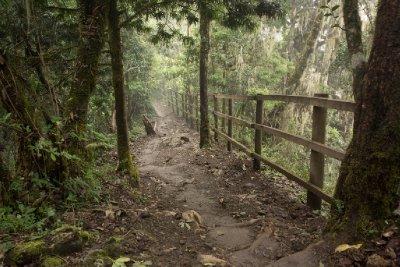 2013-03-11 - Tanzania - 1 - Kilimanjaro Day 8 - (39) - Tip Ceremony