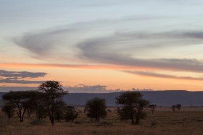 2013-03-15 - Tanzania - 4 - Serengeti - (52) - Lemala Lodge
