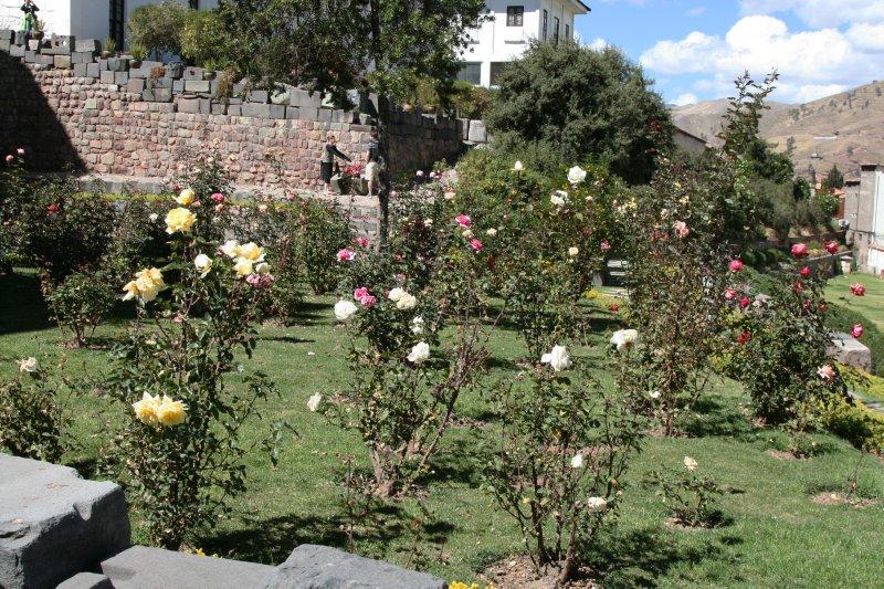 Qorikancha Gardens