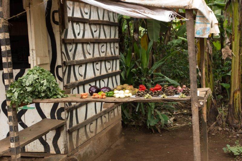 2013-03-11 - Tanzania - 1 - Kilimanjaro Day 8 - (154)