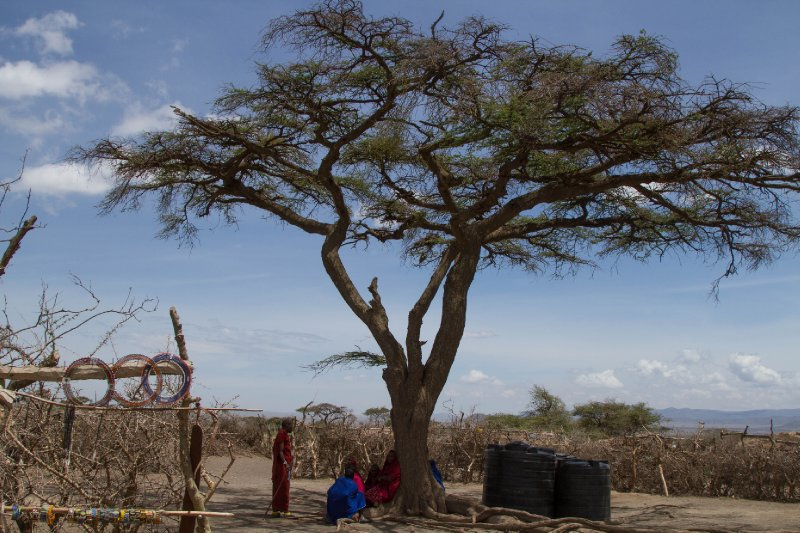 2013-03-17 - Tanzania - 2 - Ngorongoro Park - (184) - Maasai Village
