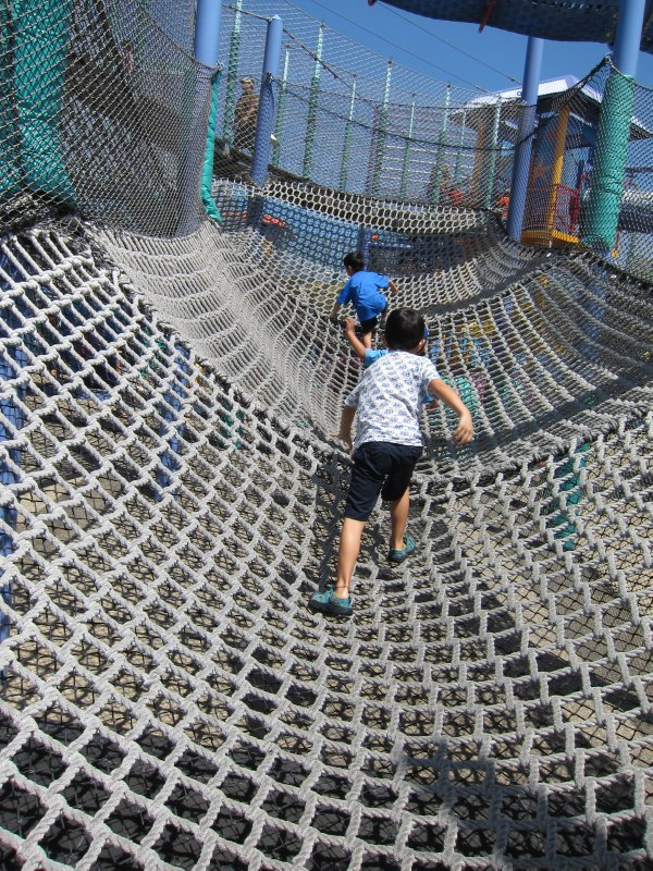 Climbing Net