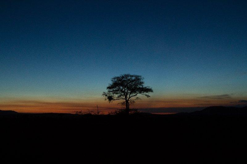 2013-03-16 - Tanzania - Serengeti - 4 - Lemala Camp - (5)