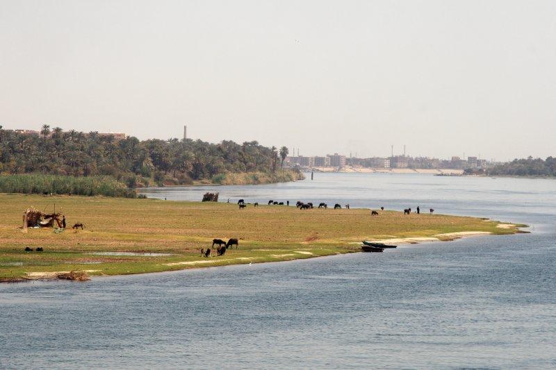Nile River 1