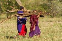 2013-03-15 - Tanzania - 4 - Serengeti - (7) - Lemala Lodge