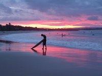 Noosa Surfer