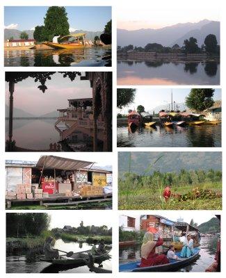 neegi collage 2